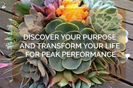 Find Phoenix Motivational Speaker